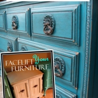"Create this look on your furniture with our DIY eBook ""Facelift Your Furniture"".  Only $10 & available for immediate download at www.faceliftyourfurniture.com"